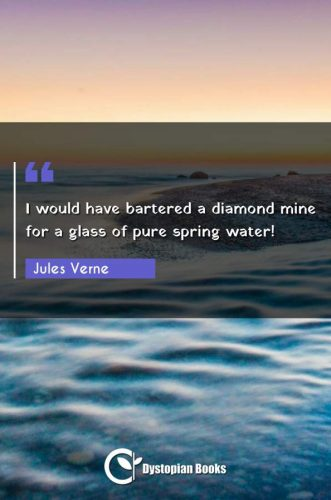 I would have bartered a diamond mine for a glass of pure spring water!