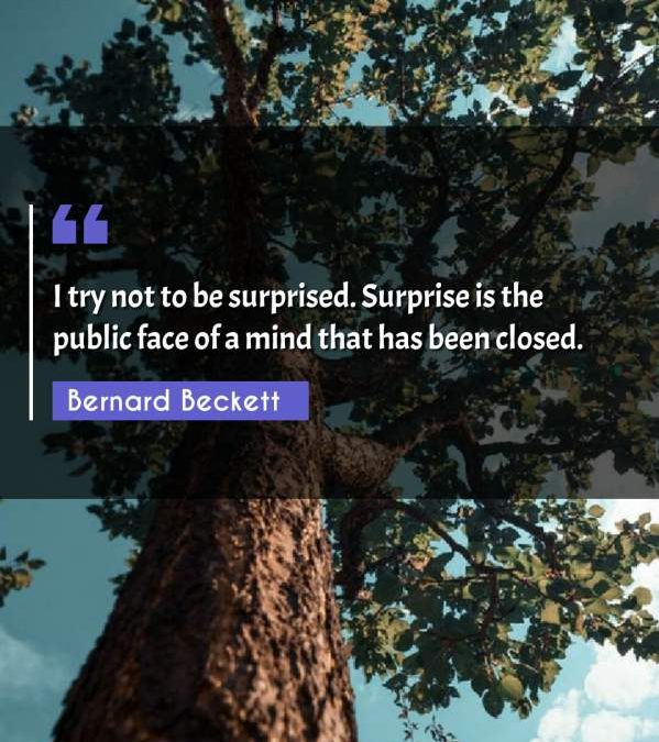 I try not to be surprised. Surprise is the public face of a mind that has been closed.