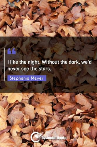 I like the night. Without the dark, we'd never see the stars.