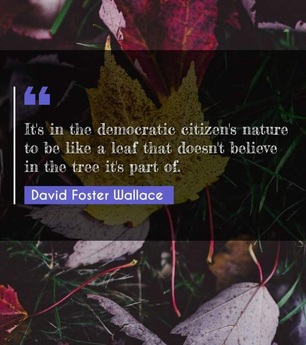 It's in the democratic citizen's nature to be like a leaf that doesn't believe in the tree it's part of.