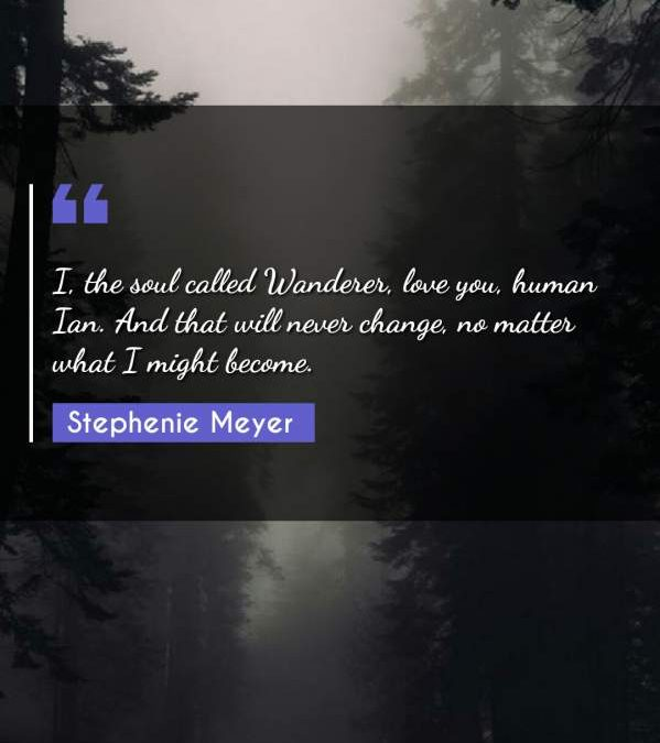 I, the soul called Wanderer, love you, human Ian. And that will never change, no matter what I might become.