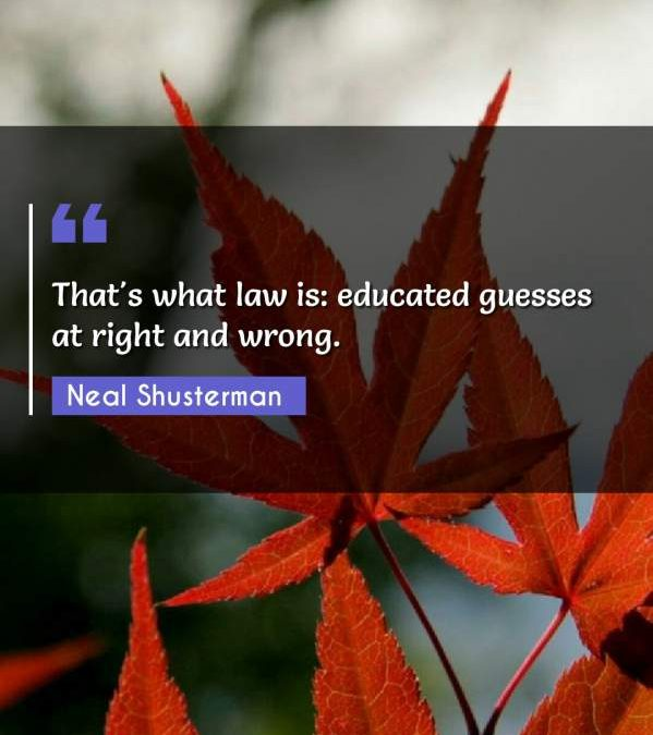That's what law is: educated guesses at right and wrong.
