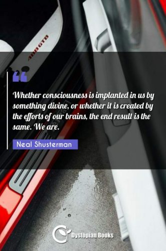 Whether consciousness is implanted in us by something divine, or whether it is created by the efforts of our brains, the end result is the same. We are.