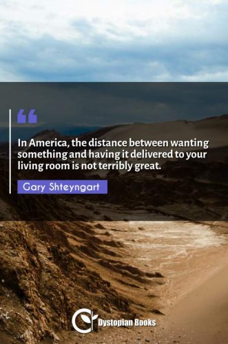 In America, the distance between wanting something and having it delivered to your living room is not terribly great.