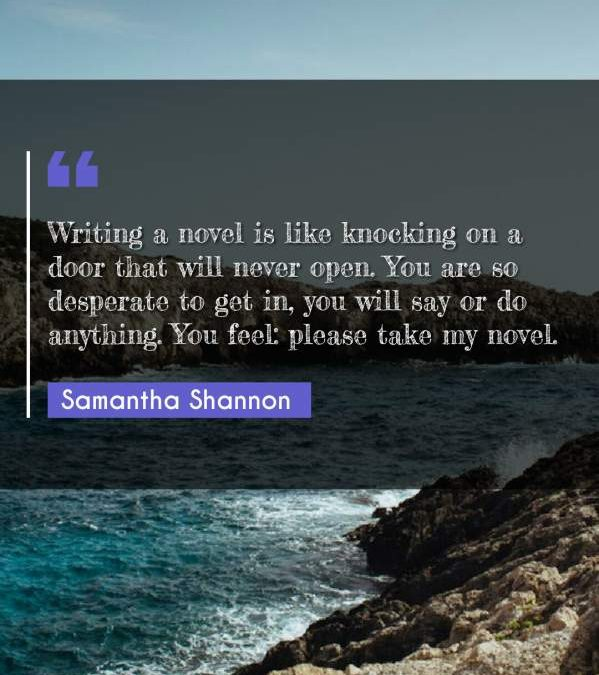 Writing a novel is like knocking on a door that will never open. You are so desperate to get in, you will say or do anything. You feel: please take my novel.