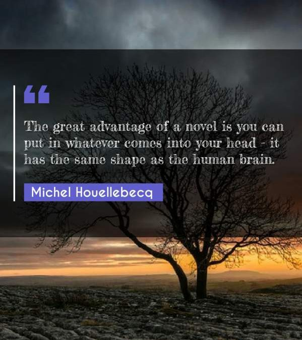 The great advantage of a novel is you can put in whatever comes into your head - it has the same shape as the human brain.