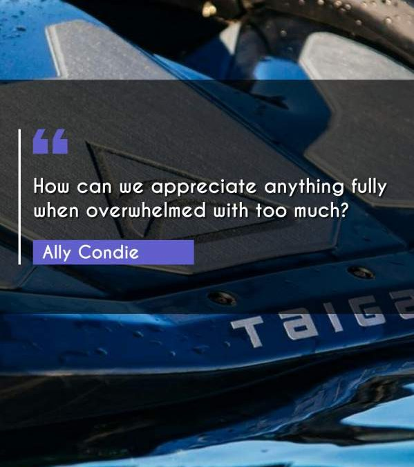 How can we appreciate anything fully when overwhelmed with too much?