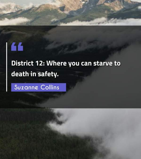 District 12: Where you can starve to death in safety.