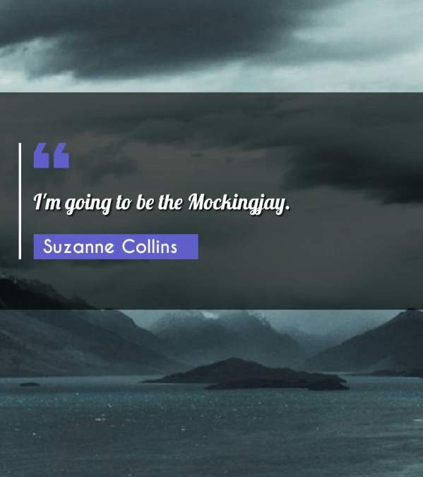 I'm going to be the Mockingjay.