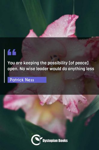 You are keeping the possibility [of peace] open. No wise leader would do anything less