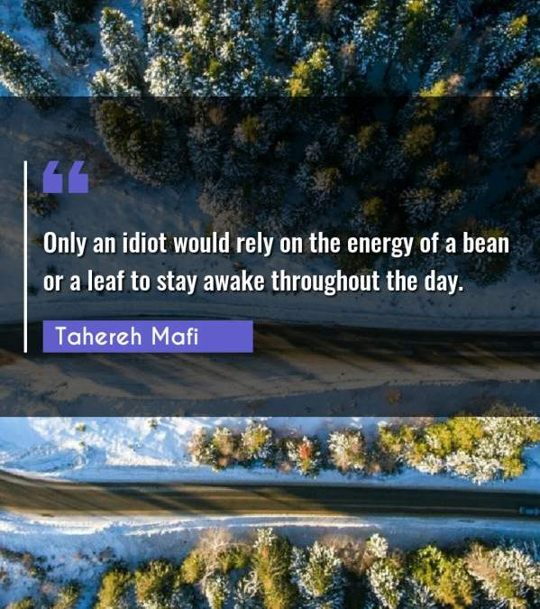 Only an idiot would rely on the energy of a bean or a leaf to stay awake throughout the day.