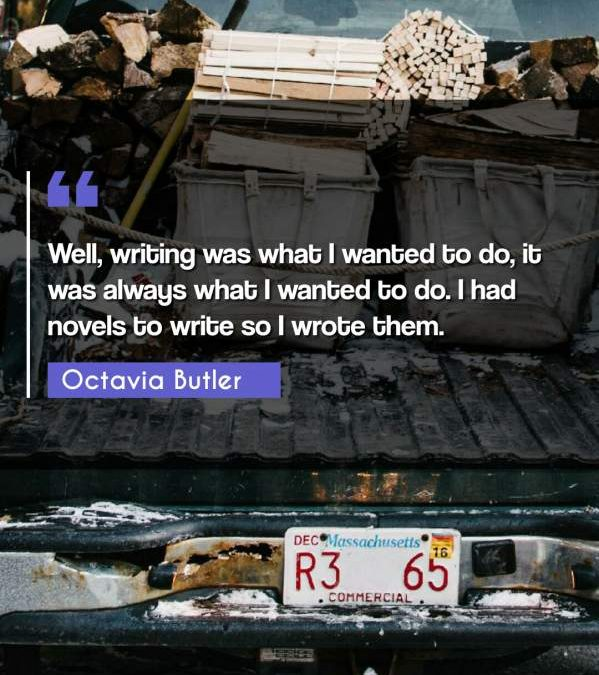 Well, writing was what I wanted to do, it was always what I wanted to do. I had novels to write so I wrote them.