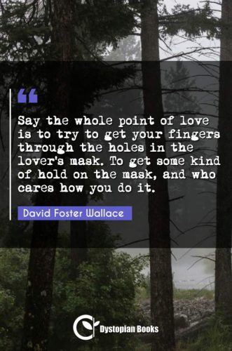 Say the whole point of love is to try to get your fingers through the holes in the lover's mask. To get some kind of hold on the mask, and who cares how you do it.