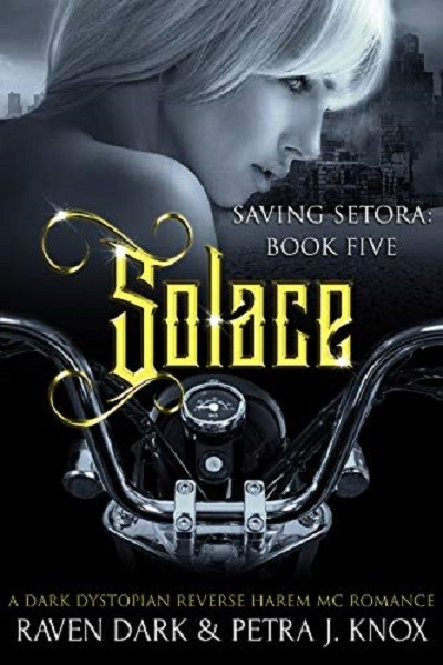 Dystopian Book Solace