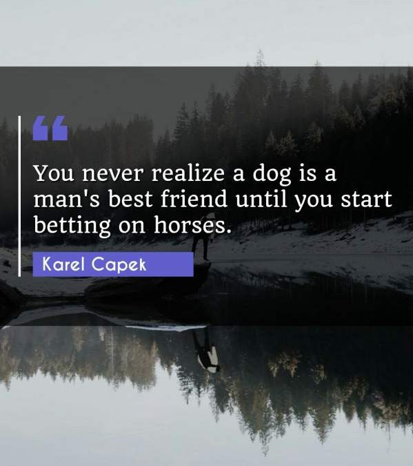You never realize a dog is a man's best friend until you start betting on horses.