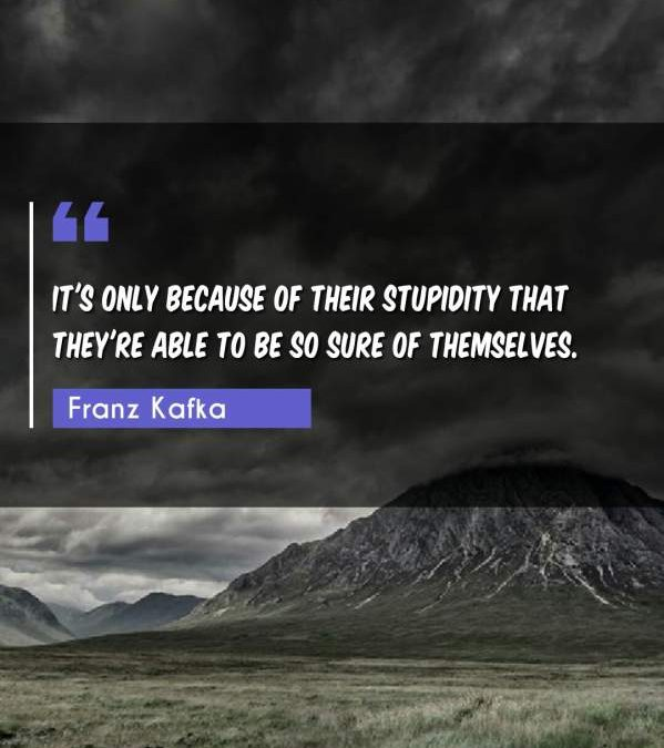 It's only because of their stupidity that they're able to be so sure of themselves.