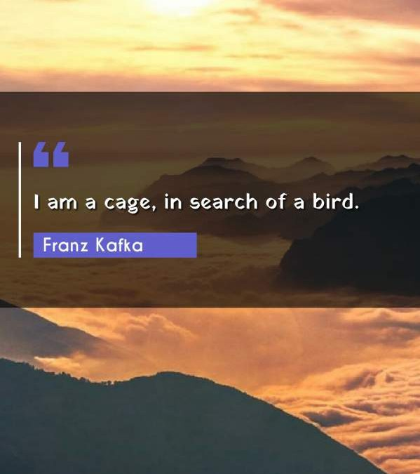 I am a cage, in search of a bird.