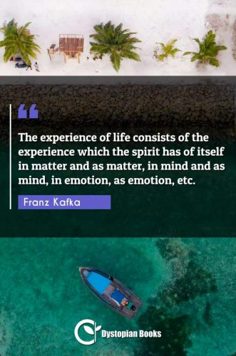 The experience of life consists of the experience which the spirit has of itself in matter and as matter, in mind and as mind, in emotion, as emotion, etc.