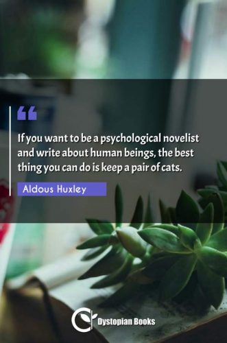 If you want to be a psychological novelist and write about human beings, the best thing you can do is keep a pair of cats.