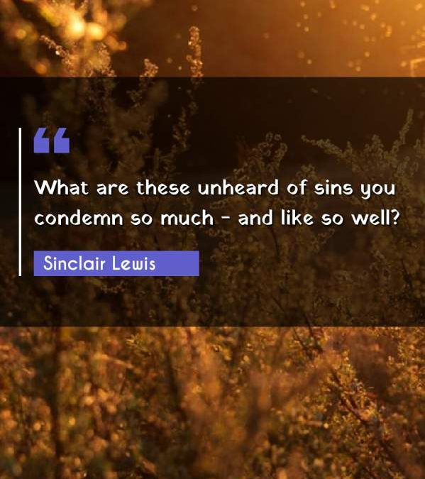 What are these unheard of sins you condemn so much - and like so well?
