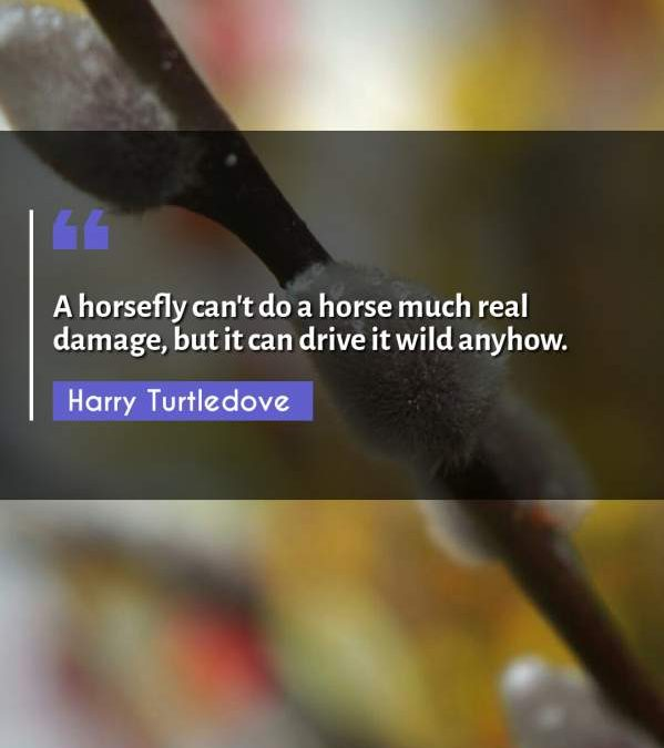 A horsefly can't do a horse much real damage, but it can drive it wild anyhow.