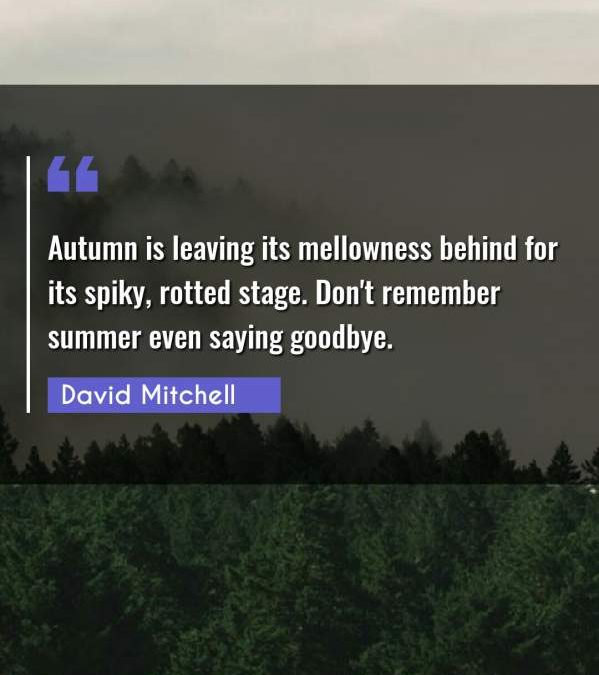 Autumn is leaving its mellowness behind for its spiky, rotted stage. Don't remember summer even saying goodbye.