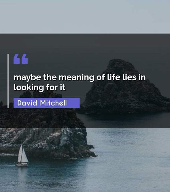 maybe the meaning of life lies in looking for it