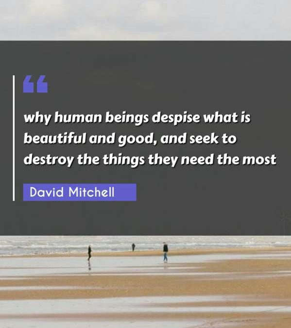 why human beings despise what is beautiful and good, and seek to destroy the things they need the most