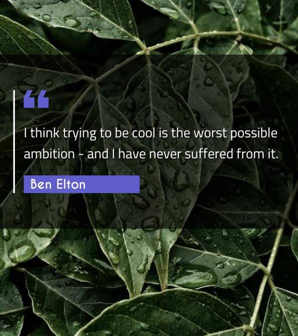 I think trying to be cool is the worst possible ambition - and I have never suffered from it.