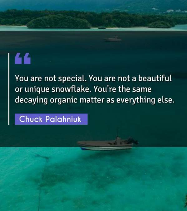 You are not special. You are not a beautiful or unique snowflake. You're the same decaying organic matter as everything else.