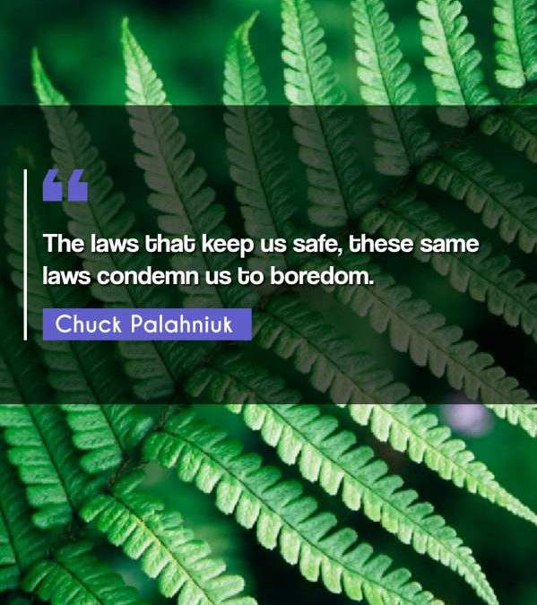 The laws that keep us safe, these same laws condemn us to boredom.