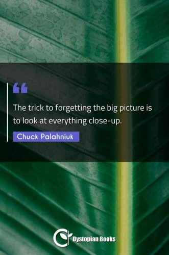 The trick to forgetting the big picture is to look at everything close-up.