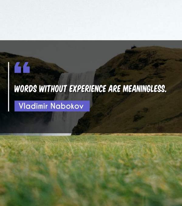 Words without experience are meaningless.