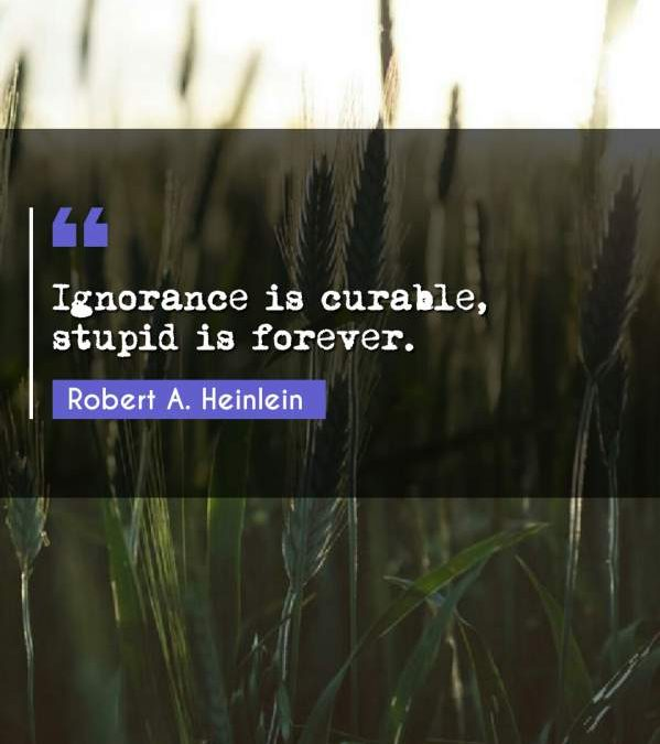 Ignorance is curable, stupid is forever.