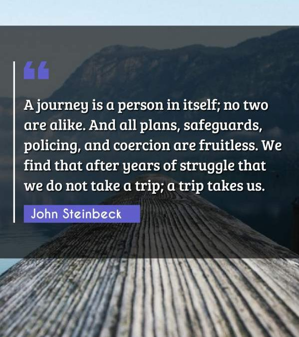 A journey is a person in itself; no two are alike. And all plans, safeguards, policing, and coercion are fruitless. We find that after years of struggle that we do not take a trip; a trip takes us.