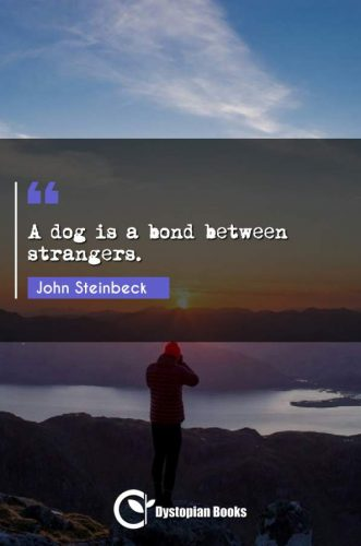A dog is a bond between strangers.