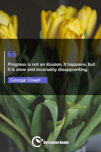 Progress is not an illusion, it happens, but it is slow and invariably disappointing.